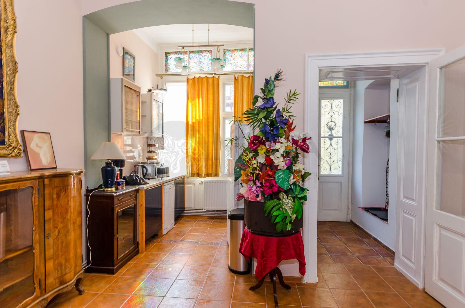 Apartament 5 camere situat CENTRAL (Alexandru Xenopol) ,116 mp teren